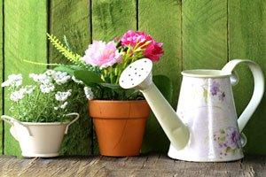 Basteln Mit Blumentopfen Blumentopfglocke