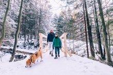 Die schönsten Winterwanderungen für Familien