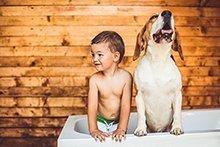 Haustiere für Kinder sind immer eine Familienentscheidung