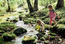 Die Natur mit Kindern entdecken – 5 Ideen für Familien