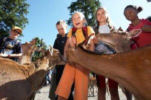 Im Natur- und Tierpark Goldau die Schweizer Tierwelt entdecken