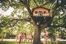 Baumhaus bauen: So schaffen Sie Ihren Kindern eigenes Reich in luftiger Höhe