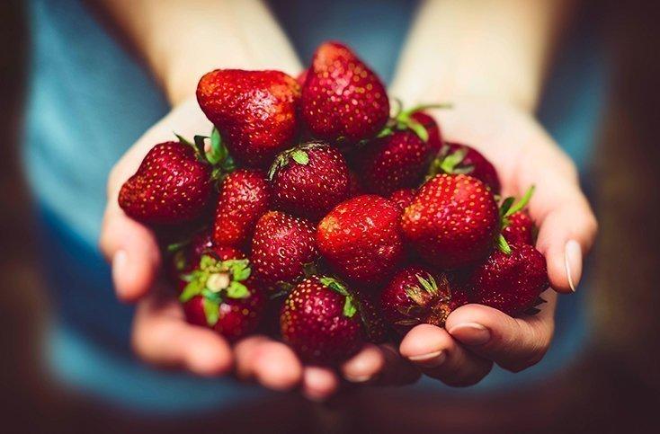 Naschen erlaubt! Wo Sie jetzt die feinsten Erdbeeren selber pflücken