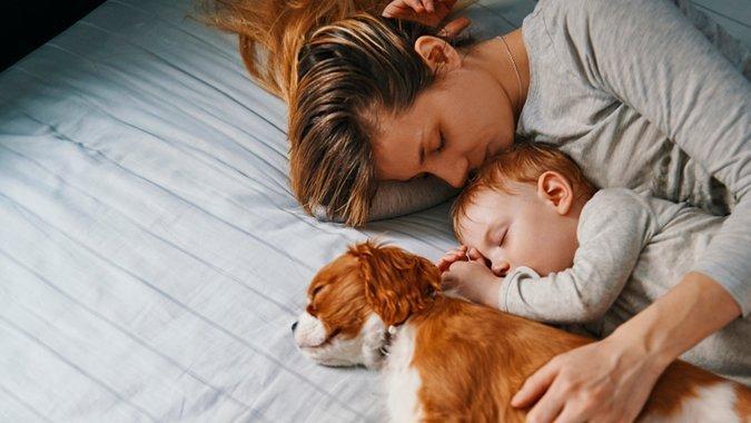 Alle stecken unter einer Decke! Mythen rund ums Familienbett